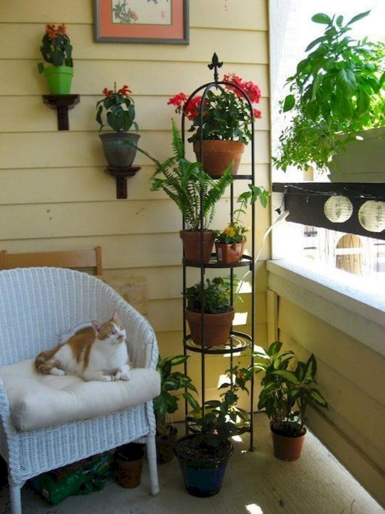 Small Apartment Balcony Garden Ideas: 50+ Best Small Apartment Balcony Decorating Ideas